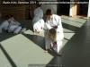 budoseminar_2011_web_018