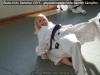 budoseminar_2011_web_057