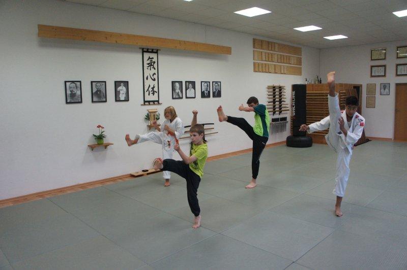 fps14_karatekids_13