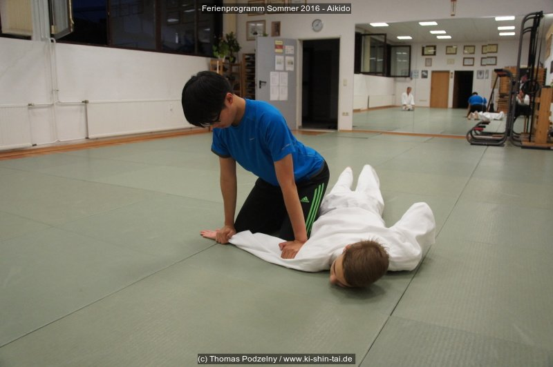 fps16_aikido_04