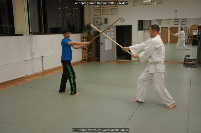 fps16_aikido_13