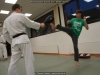fps17_karate_kobudo_25