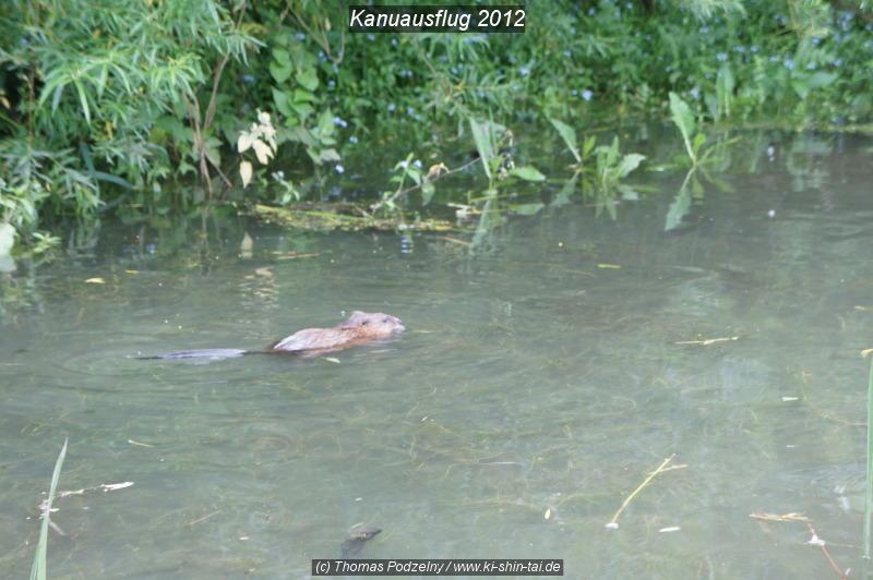 kanu_2012_web_026