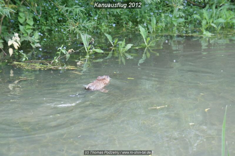 kanu_2012_web_027